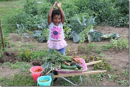 Gardening 692