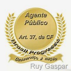 agente público desserviço