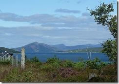 moll road view north