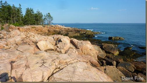 Acadia National Park_022