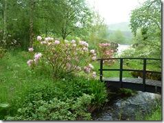 haystoun garden 025