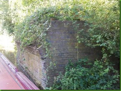 005  Relic of a rustic bridge
