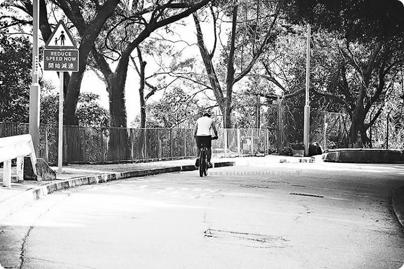 Cyclist-(1)