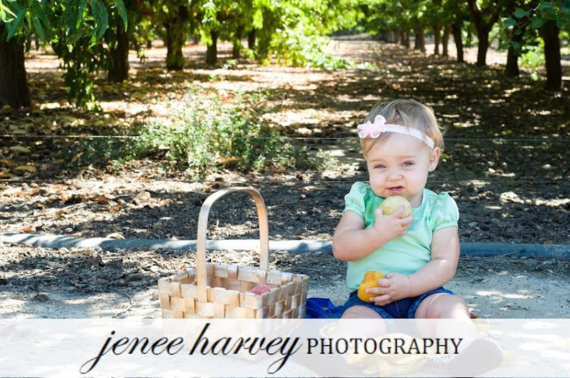 picking fruit-4