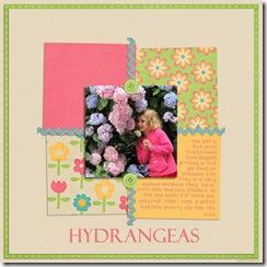 SnS-Hydrangeas