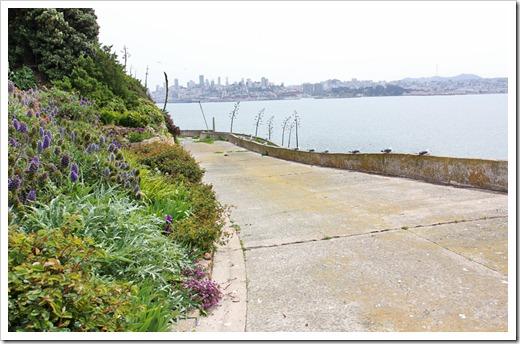 120408_Alcatraz_284