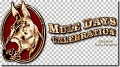 mdo_mule_gld
