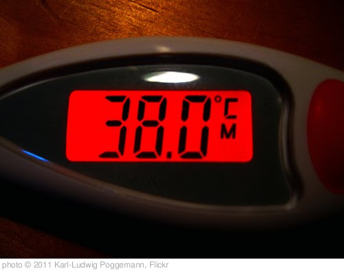 '38.0 °C - display of human body temperature by a digital thermometer' photo (c) 2011, Karl-Ludwig Poggemann - license: http://creativecommons.org/licenses/by/2.0/
