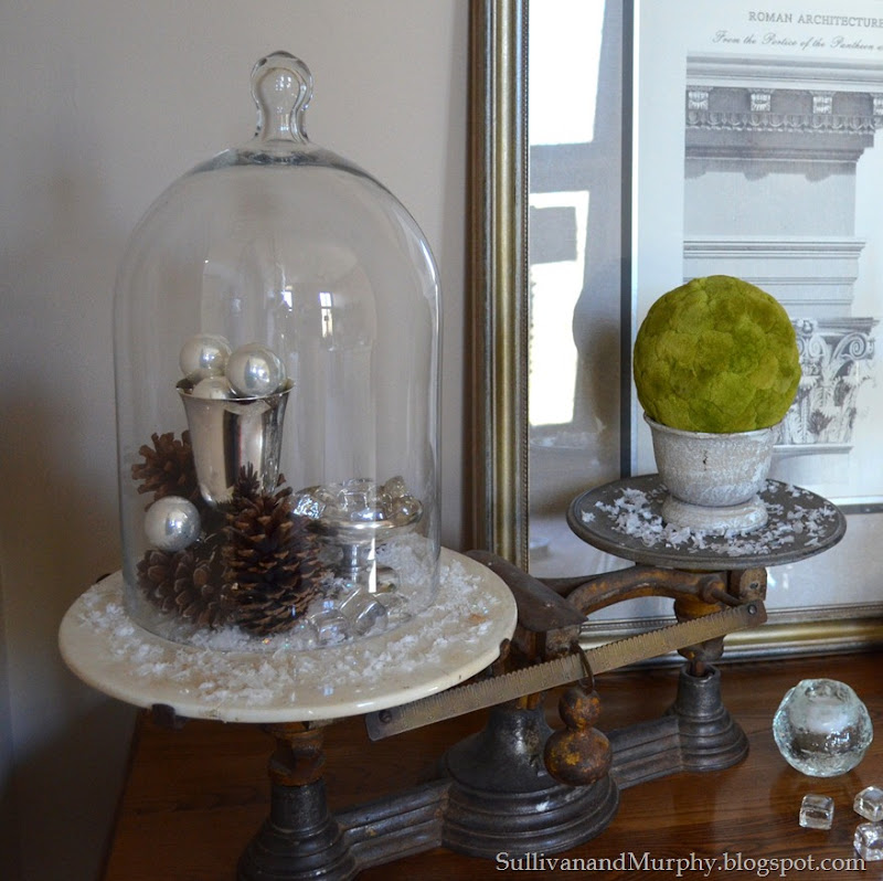 with cloche and moss ball