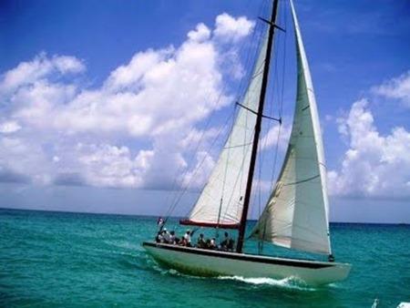 sailing_caribbeana