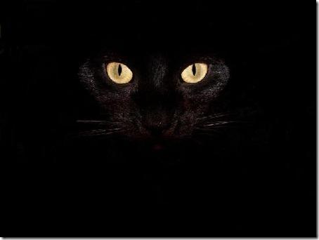 imagini desktop negre