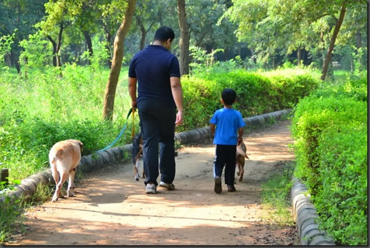 A Boy and His dog 5