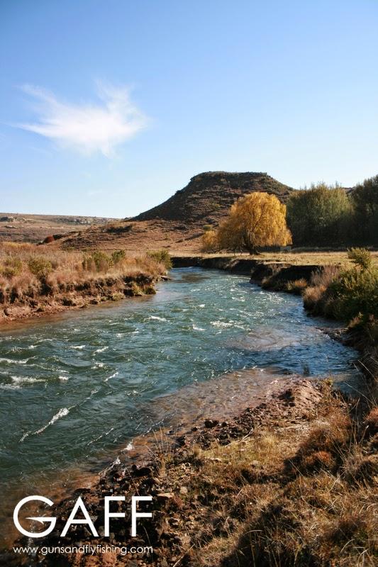 Ash River.jpg