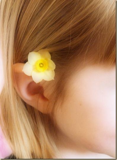 Tiny Daffodil 3