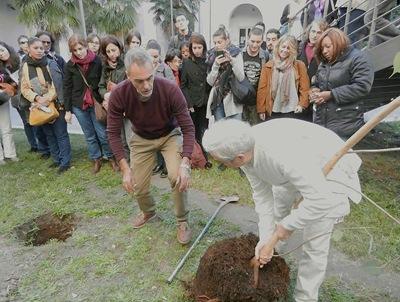 Messa a dimora della pianta di Ficus religiosa (Massimo Livadiotti ed Enzo Barchi)