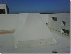 IMG00694-20111007-1004