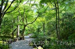 41 - Glória Ishizaka - Arashiyama e Sagano - Kyoto - 2012