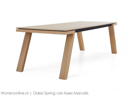 odesi-spring-designtafel