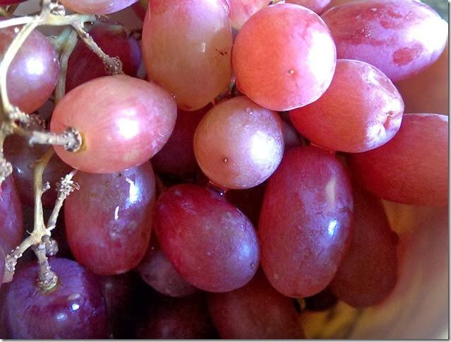 grapes-public-domain-pictures-1 (2307)