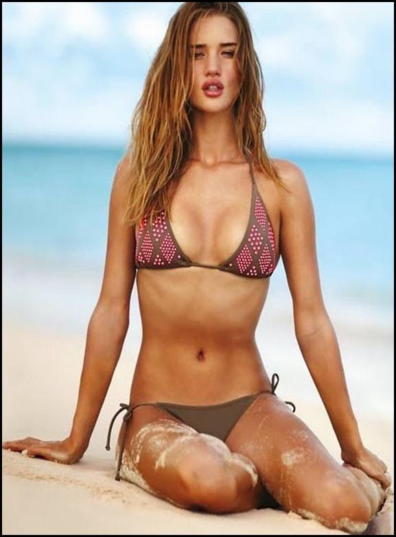 Katrina Wardrobe Malfunction Pics Katrina Kaif Bikini Hd