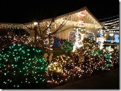 during the christmas season we enjoy going to look at christmas lights its true we may live on the community christmas tree lane where thousands of - Christmas Tree Lane Modesto Ca