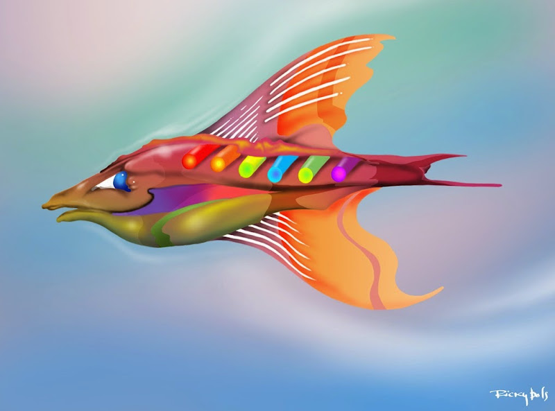 peixaocor