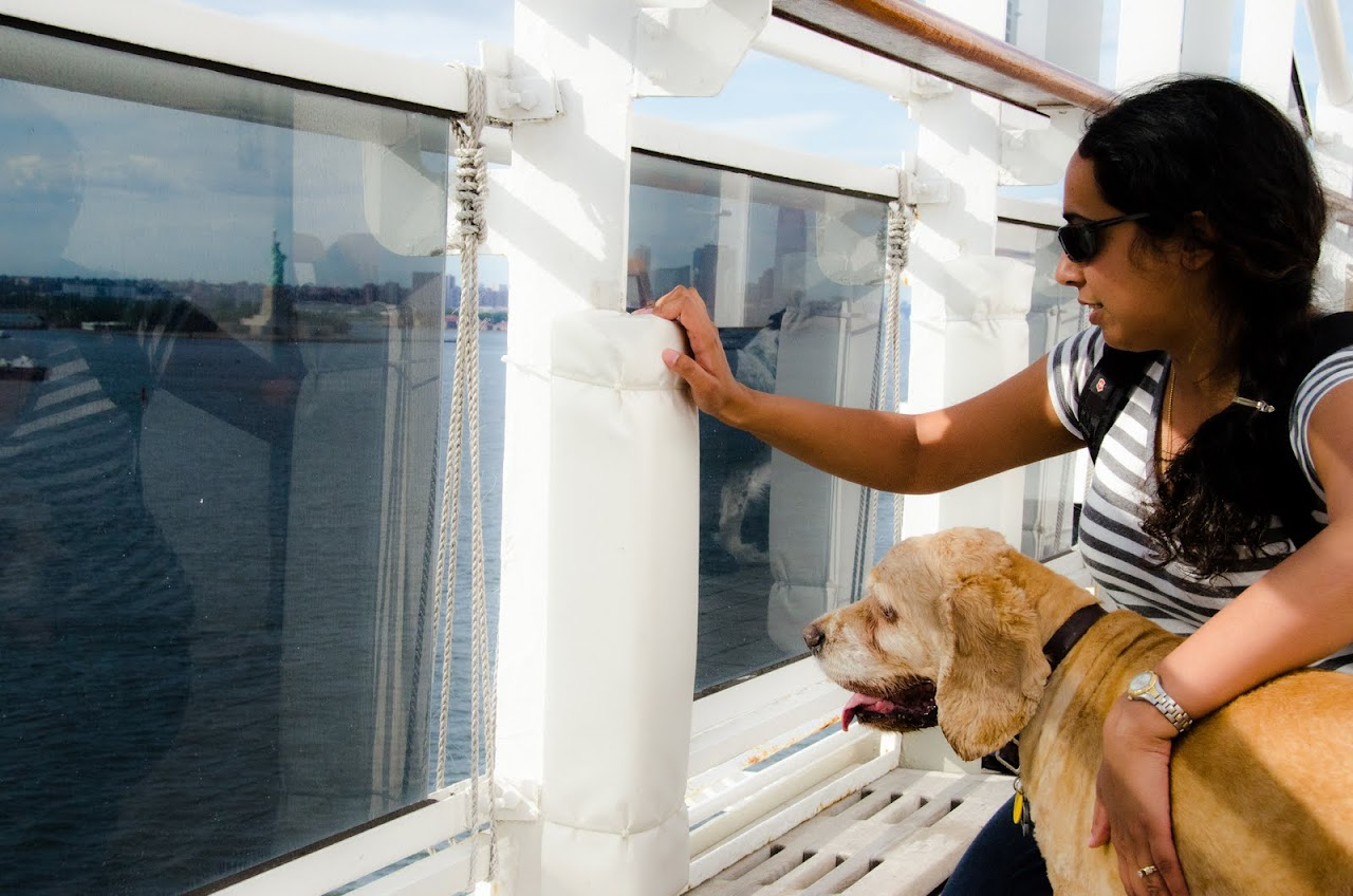 Chewy looking at the Statue of Liberty from the QM2
