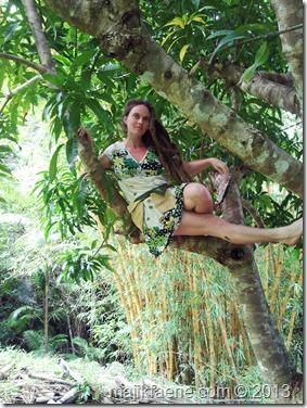 10 mango tree