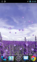 Screenshot of Lavender Live Wallpaper
