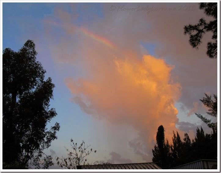 04-12-morning-rainbow2