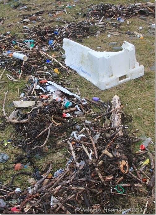 9-beach-debris