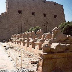 21 - Avenida de esfinges y pilono de un templo de Karnak