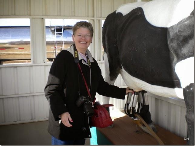12-08-13 A Shamrock Farms Tour Stanfield (31)