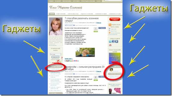 """пример добавленных гаджетов на блоге """"Косметика для всех"""""""