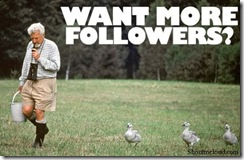 Want-more-followers-520x339