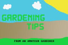 Gardening tip1
