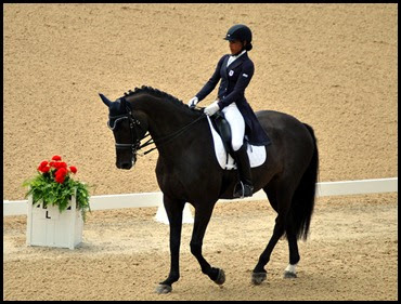 08b - Dressage Arena - beautiful horse and rider