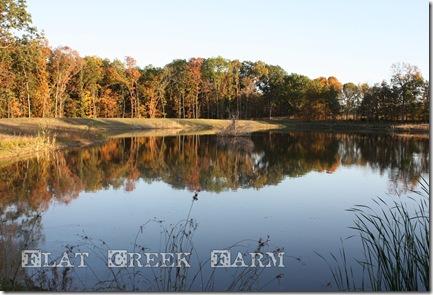 fall_lake2