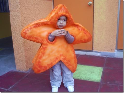 disfraz estrella (6)