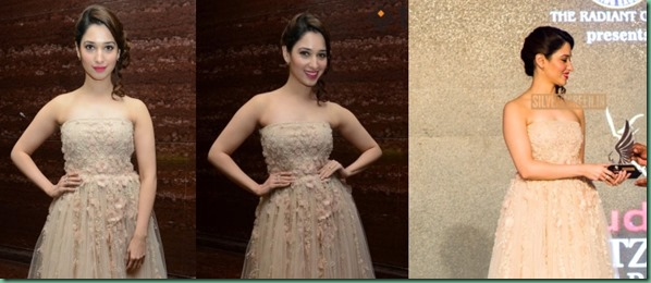tamannaah-bhatia-hema-kaul-ritz-icon-awards-2014