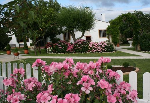 portugal - primavera no nosso quintal - Glória Ishizaka