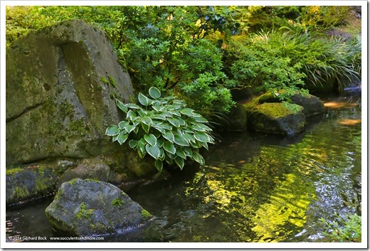 140712_PortlandJapaneseGarden_038