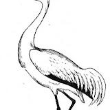 crane-3-coloring-page.jpg