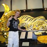 golden lion and fish at Osaka Castle in Osaka, Osaka, Japan