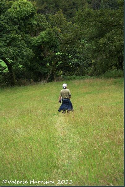 32-meadow