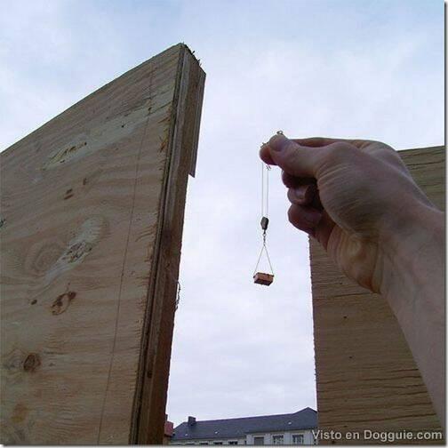 fotos con perspectivas ilusorias (29)