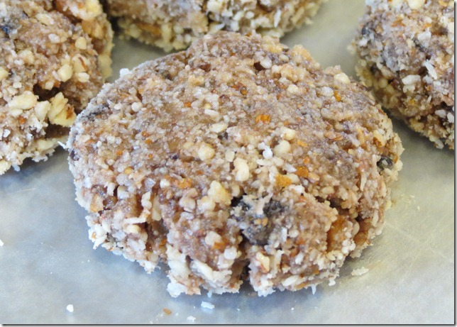 Sugar Free Raw Cashew Cookies 1-12-13