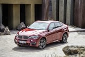 2014-5 BMW X6_thumb[6]