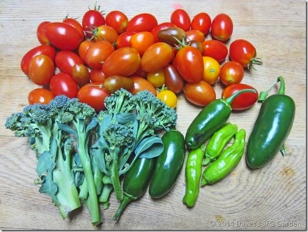 Tomatoes&Broccoli