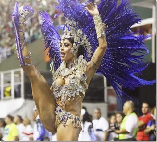 Carna2014-Aline Riscado